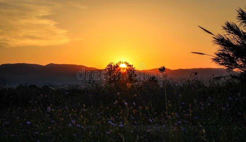 Zonsondergang onder de heuvels royalty-vrije stock foto