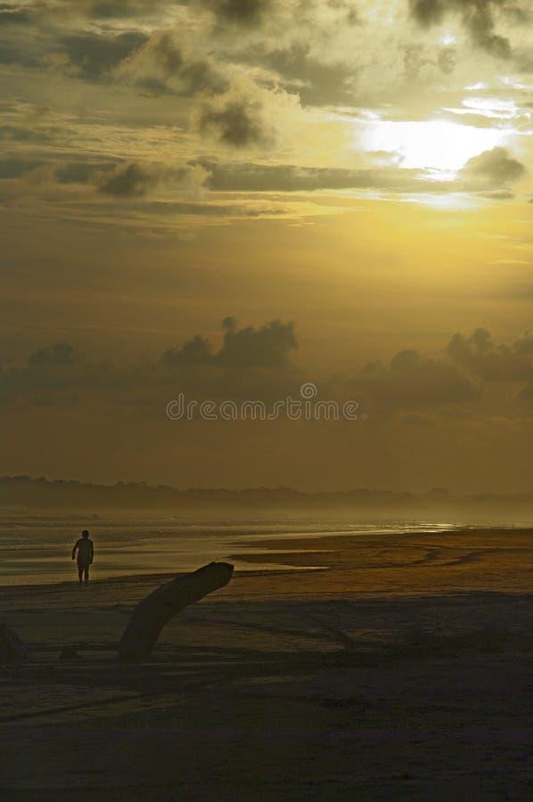 Zonsondergang op Costa Ricaans strand stock afbeeldingen