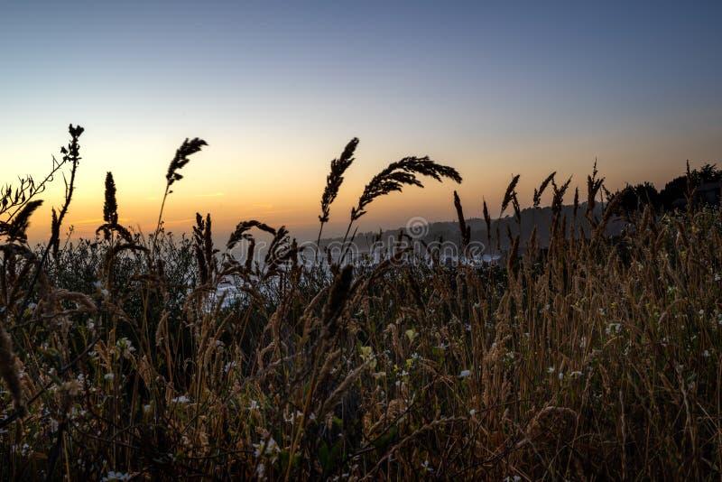 Zonsondergang op de kust van Californië royalty-vrije stock foto's