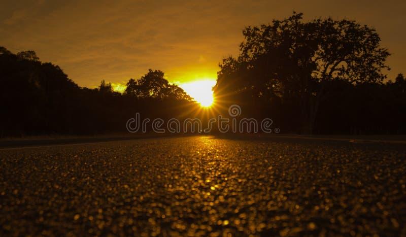 Zonsondergang op de open weg stock afbeelding
