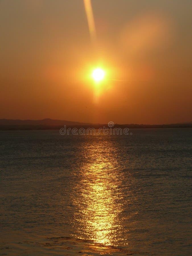 Zonsondergang op de spruit van de rivierfoto stock fotografie