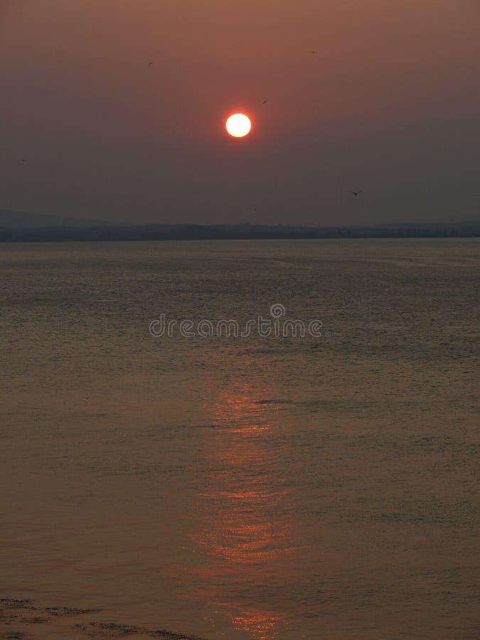 Zonsondergang op de spruit van de rivierfoto royalty-vrije stock fotografie