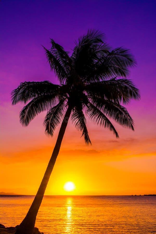 Zonsondergang op de Stille Zuidzee stock afbeeldingen