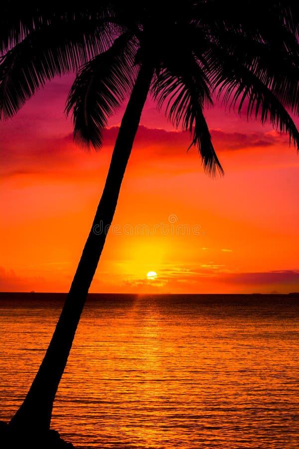 Zonsondergang op de Stille Zuidzee stock afbeelding