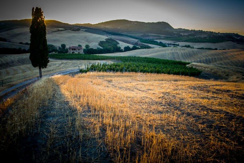 Zonsondergang op de Toscaanse heuvels royalty-vrije stock fotografie