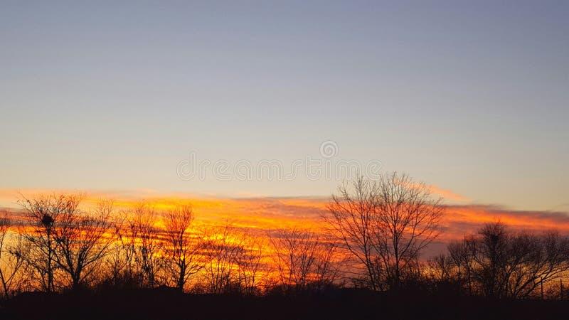 Zonsondergang op de winter stock afbeeldingen