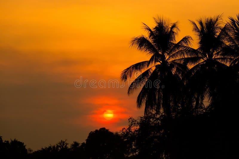 Zonsondergang op Don Khone Laos stock fotografie