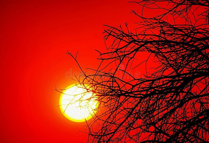 Zonsondergang op een Bushfire-Dag royalty-vrije stock foto's