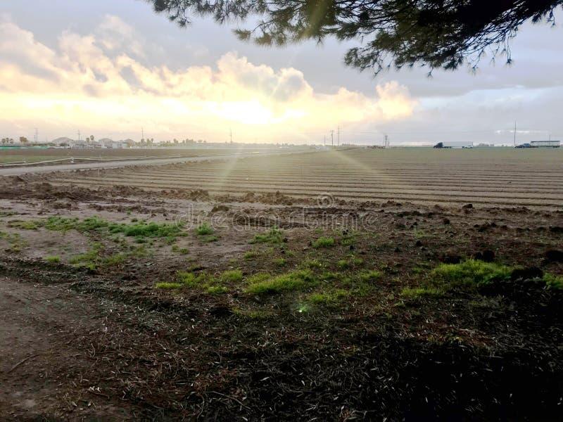 Zonsondergang op een landbouwbedrijf van Californië royalty-vrije stock fotografie