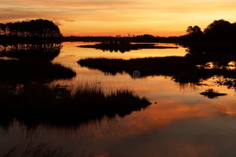 Zonsondergang op het Moeras royalty-vrije stock fotografie