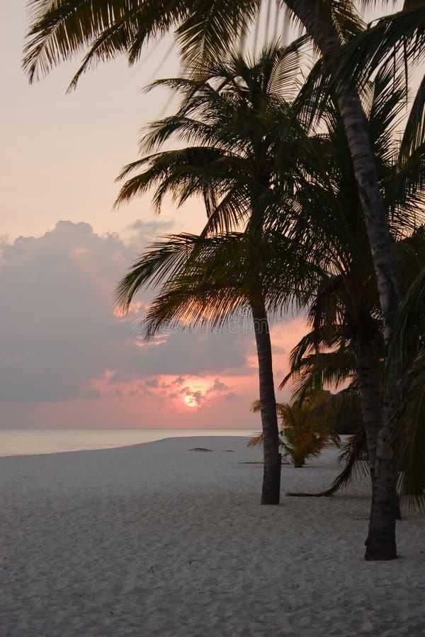 Zonsondergang op eiland stock afbeeldingen