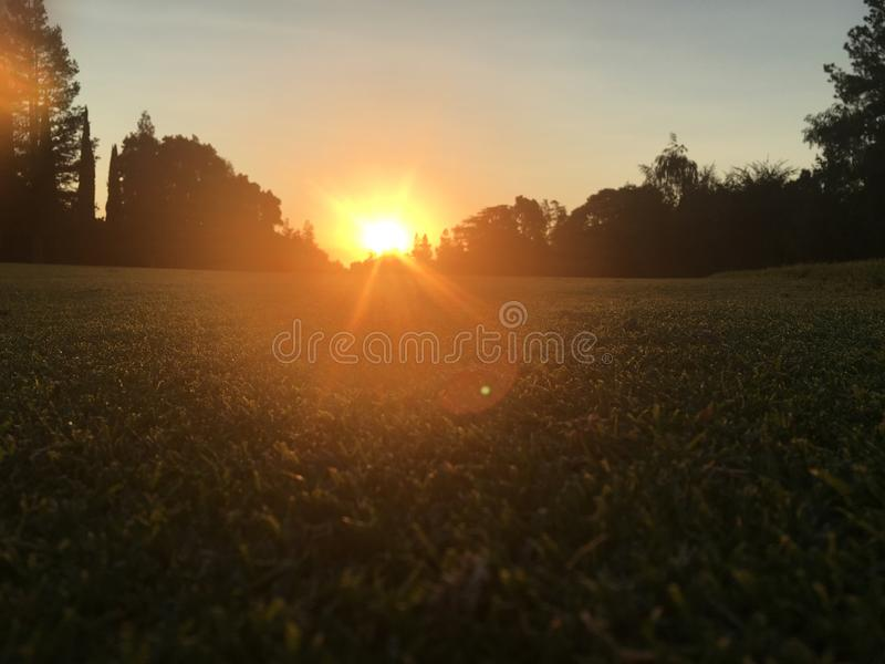 Zonsondergang op golfcursus stock foto's