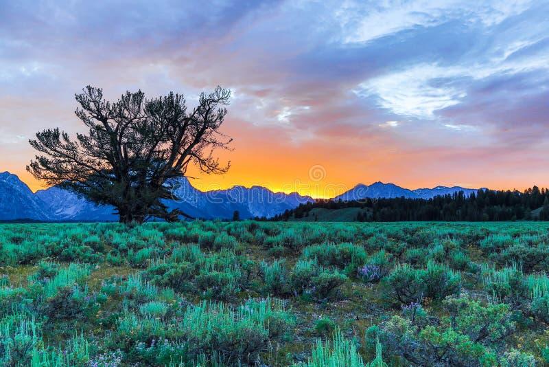 Zonsondergang op Grote Tetons stock fotografie