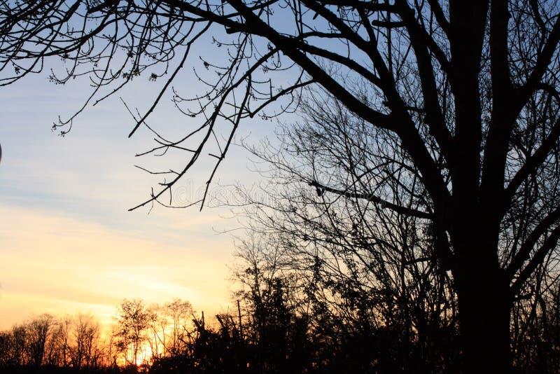 Zonsondergang op het Land op een Dag in de Lente stock foto