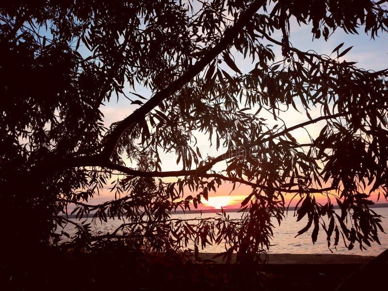 Zonsondergang op het meer stock foto's