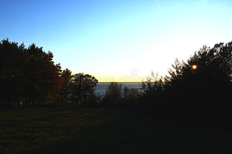 Zonsondergang op het meer door bomen, achtergrond wordt omringd die royalty-vrije stock afbeelding
