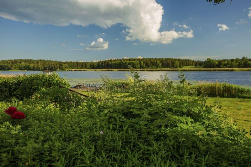 Zonsondergang op het meer in Zweden De mooie mening van de spiegelwaterspiegel Groene aardkleuren en blauwe hemel met witte wolke stock afbeelding