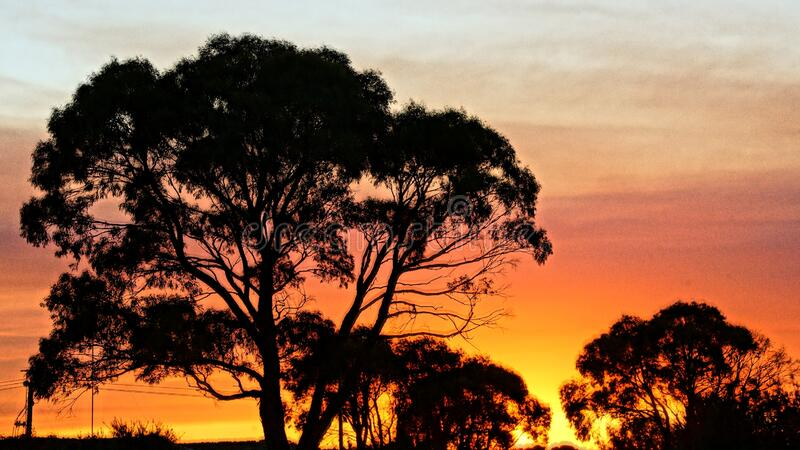 Zonsondergang op het platteland royalty-vrije stock afbeeldingen