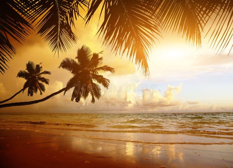 Zonsondergang op het strand stock foto