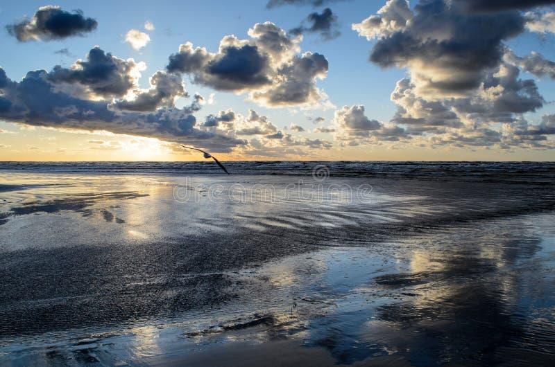 Zonsondergang op het strand met bewolkte hemel, Oostzee, Jurmala, Letland stock foto