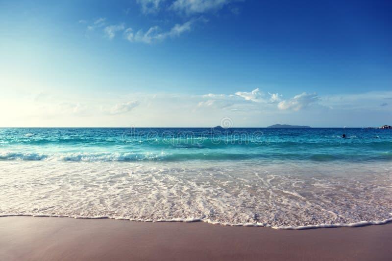 Zonsondergang op het strand van Seychellen stock afbeelding