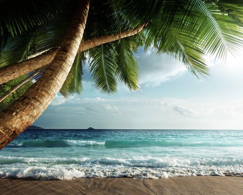 Zonsondergang op het strand van Seychellen royalty-vrije stock afbeelding
