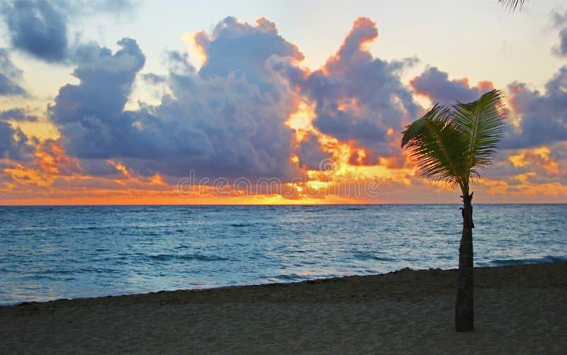 Zonsondergang op het zandige strand stock afbeelding