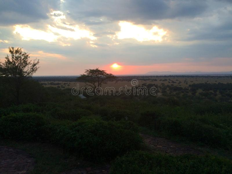 Zonsondergang op Serengeti royalty-vrije stock fotografie
