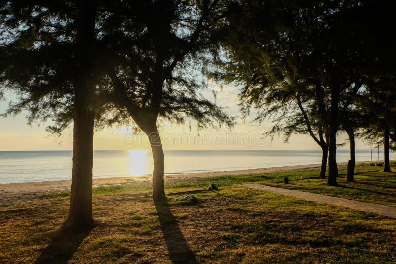 Zonsondergang op zee met bomenslingering bij het Strand Chanthabur van Chaolao Tosang stock foto