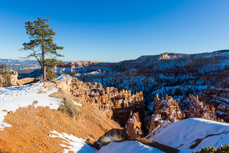 Zonsondergang over canionhellingen in sneeuw, Bryce Canyon National worden behandeld dat royalty-vrije stock afbeeldingen