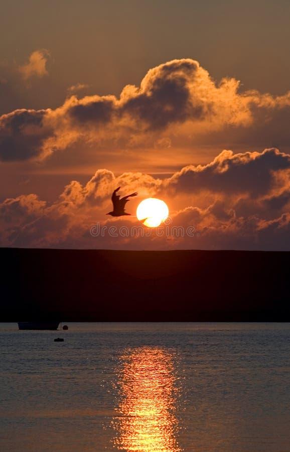 Zonsondergang over de haven van Portland in Dorset royalty-vrije stock afbeeldingen