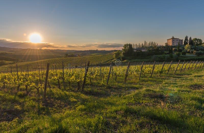 Zonsondergang over de heuvels van Toscanië, Italië royalty-vrije stock afbeelding