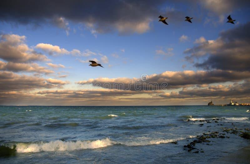 Zonsondergang over de kust stock foto's