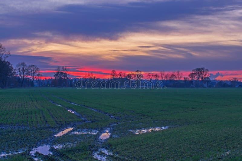 Zonsondergang over de vlakte royalty-vrije stock afbeelding