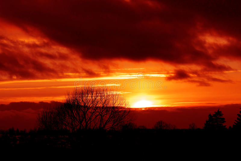 Zonsondergang over de winterbos stock afbeelding
