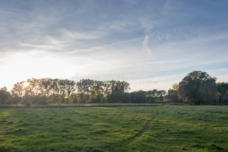 Zonsondergang over een dalingsweide stock foto's
