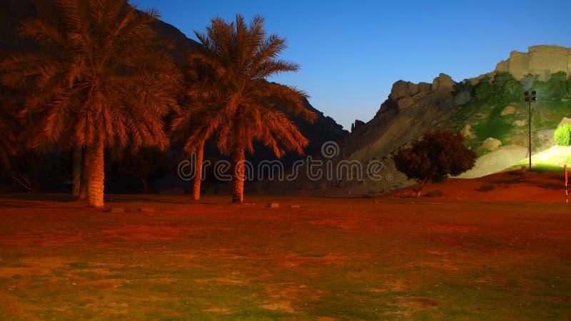 Zonsondergang over Groene Mubazarak royalty-vrije stock foto's