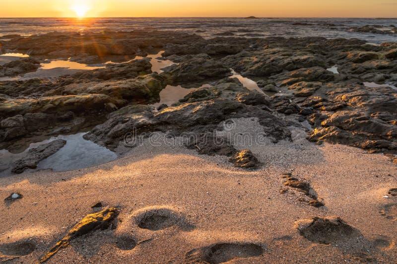 Zonsondergang over het strandzand met voetstappen royalty-vrije stock foto's