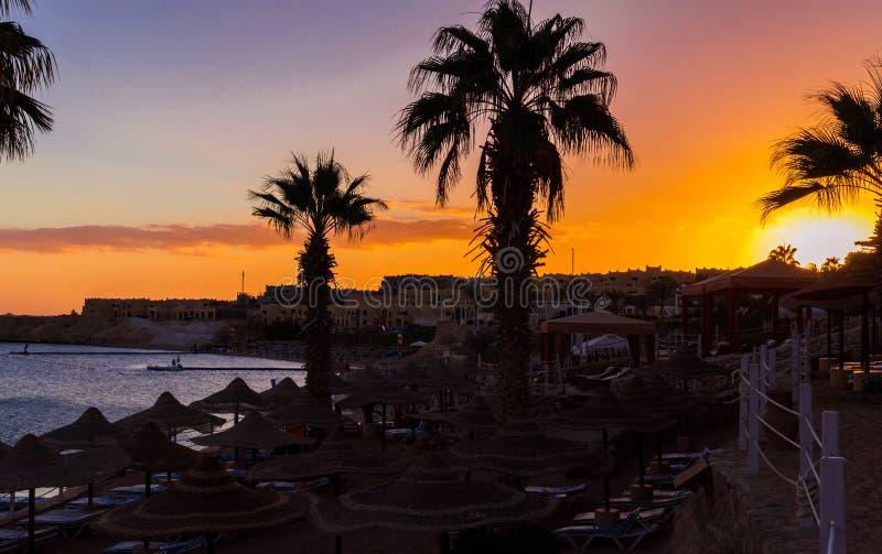 Zonsondergang over het toevluchtgebied van de Rode Overzeese kust in Egypte Vakantie in Sharm el Sheikh stock foto