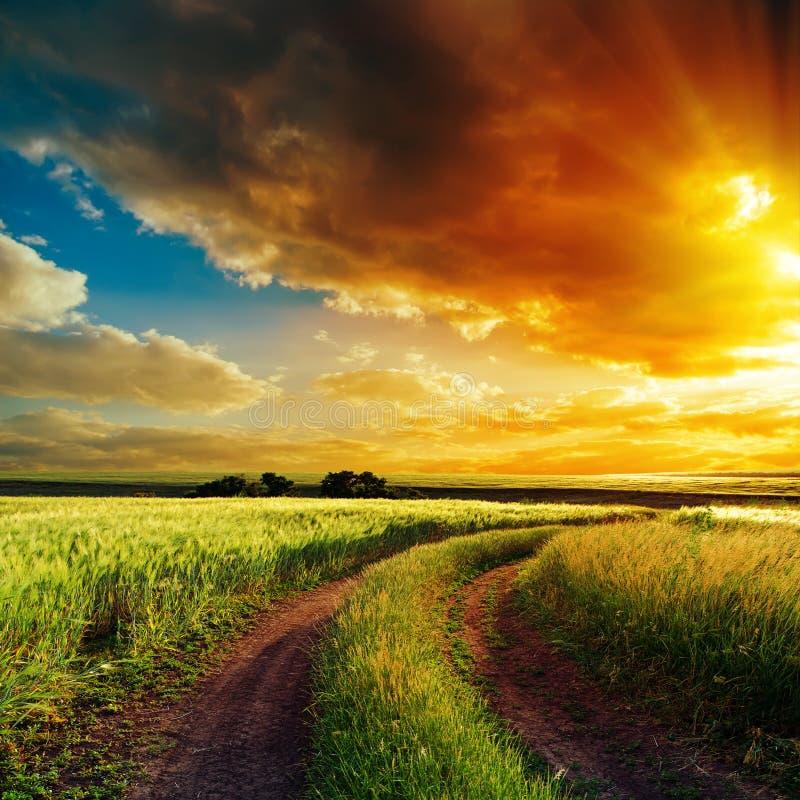 Zonsondergang over het winden van weg op gebied royalty-vrije stock afbeelding