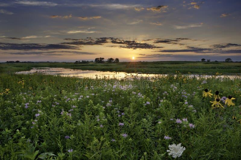 Zonsondergang Over Illinois Royalty-vrije Stock Foto