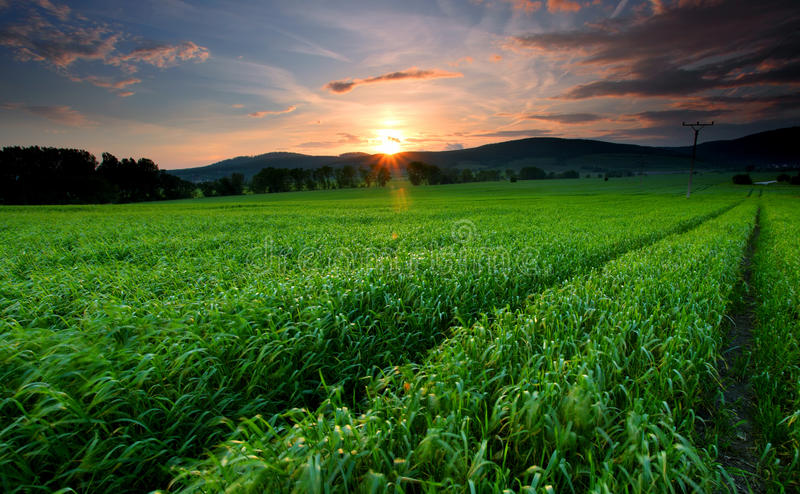 Zonsondergang over landbouwbedrijfgebied royalty-vrije stock afbeeldingen