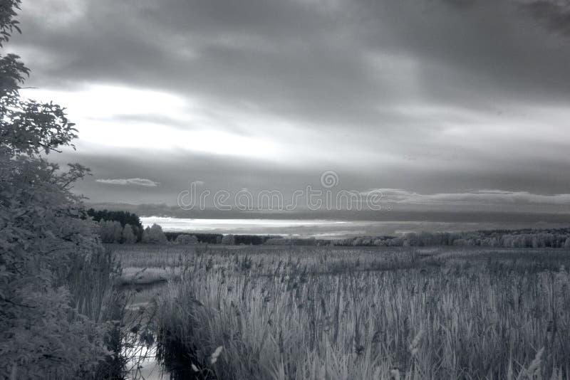 Zonsondergang over Moeras De fotografie van IRL stock foto