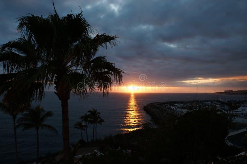 Zonsondergang over oceaan en palmensilhouet royalty-vrije stock foto