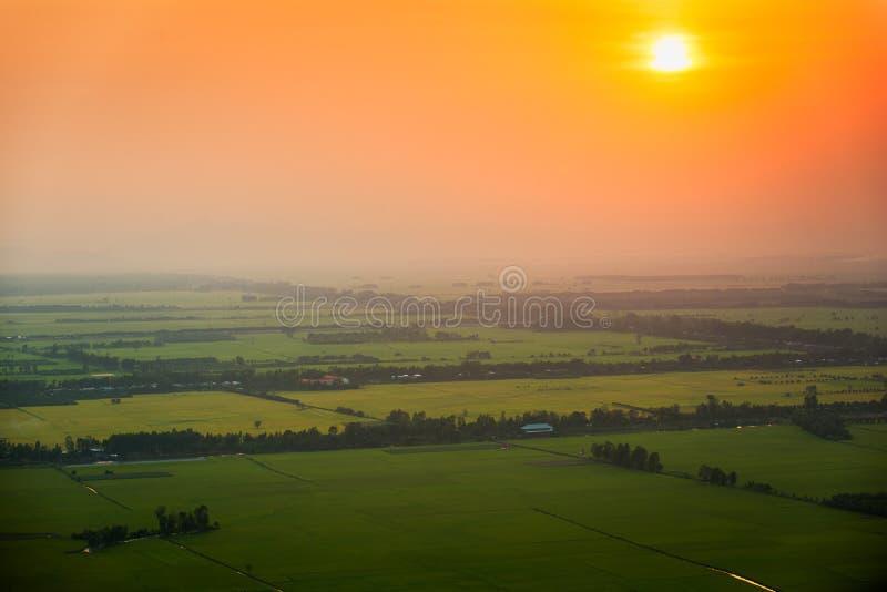 Zonsondergang over padievelden in Vietnam royalty-vrije stock afbeelding