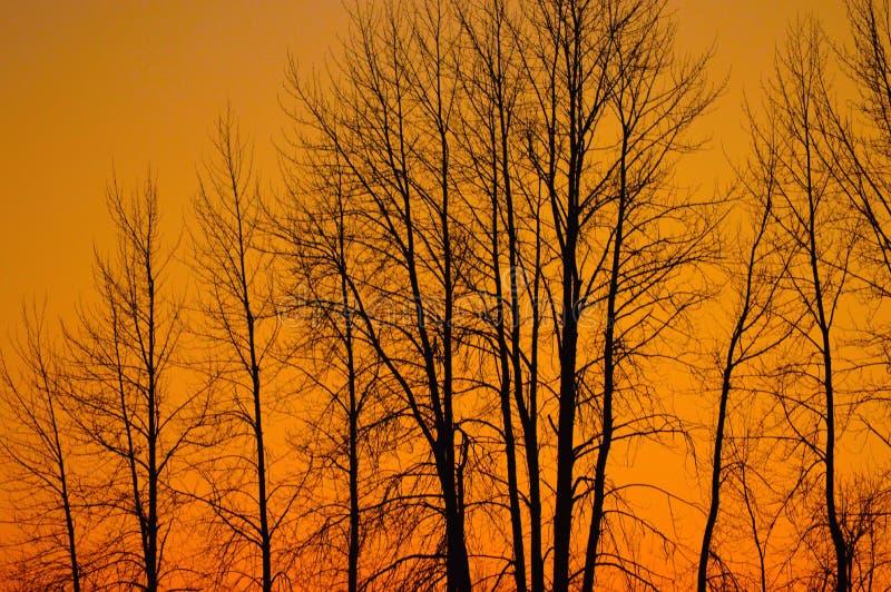 Zonsondergang over Sandpoint stock foto's