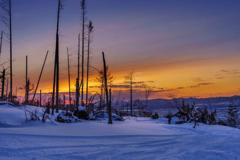 Zonsondergang over skisleep royalty-vrije stock afbeeldingen