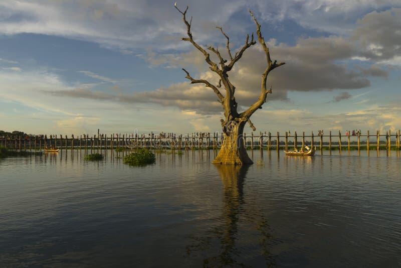 Zonsondergang over teakbrug royalty-vrije stock fotografie