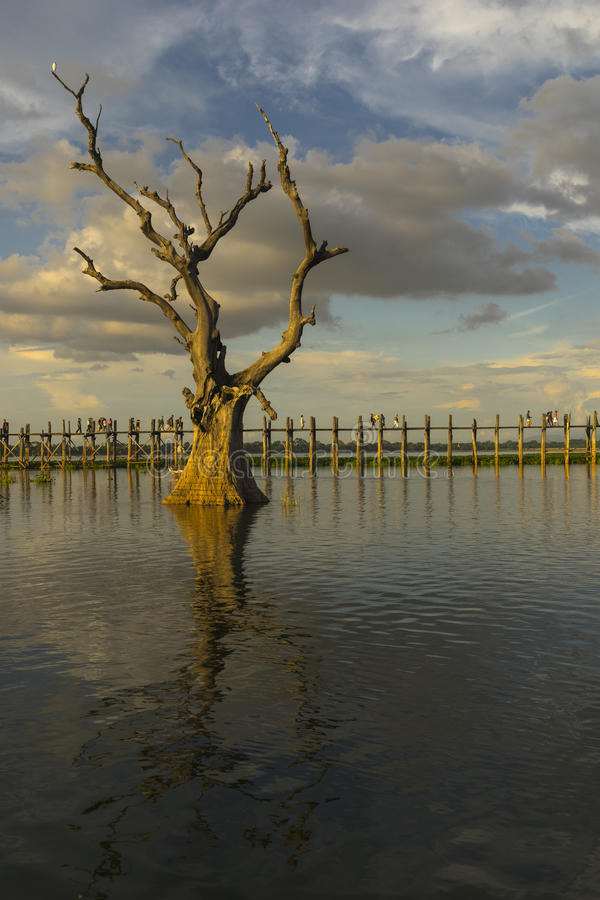 Zonsondergang over teakbrug stock afbeelding