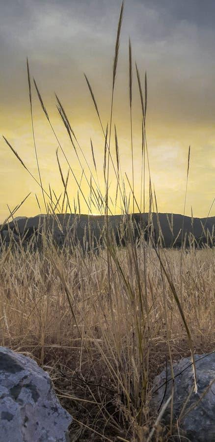 Zonsondergang over Xanthos royalty-vrije stock afbeeldingen